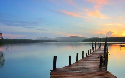 Thérapie et autres solutions pour dépasser l'anxiété en contexte de Covid-19